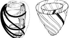 Анатомическое строение миокарда - клиническая анатомия сердца